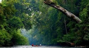Taman Negara Nationalpark
